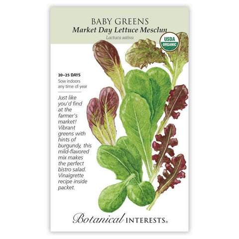 Baby Greens, Market Day Lettuce Mesclun