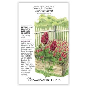 Cover Crop, Crimson Clover