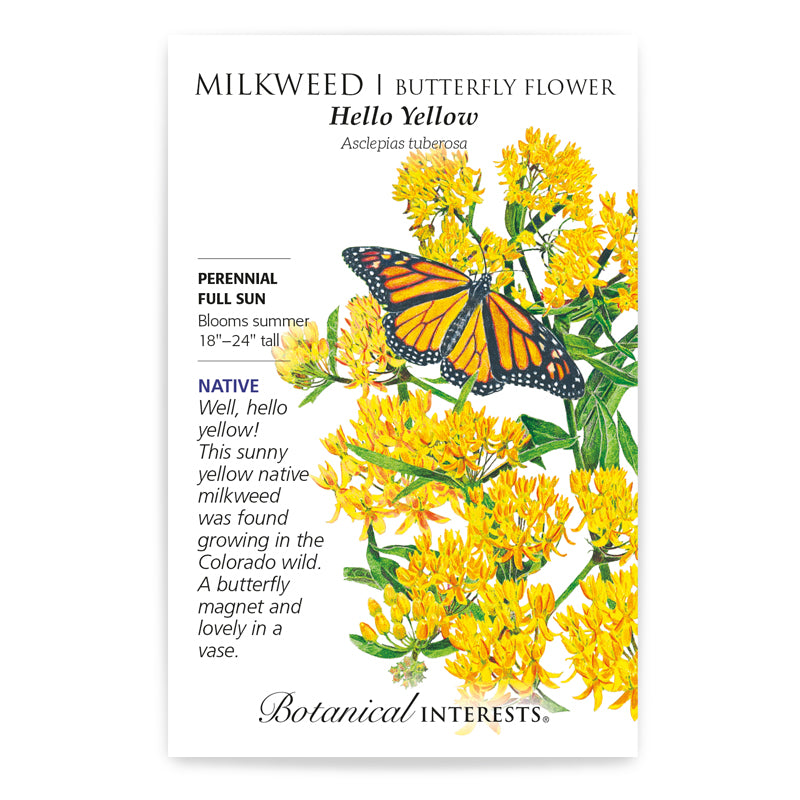 Milkweed, Hello Yellow