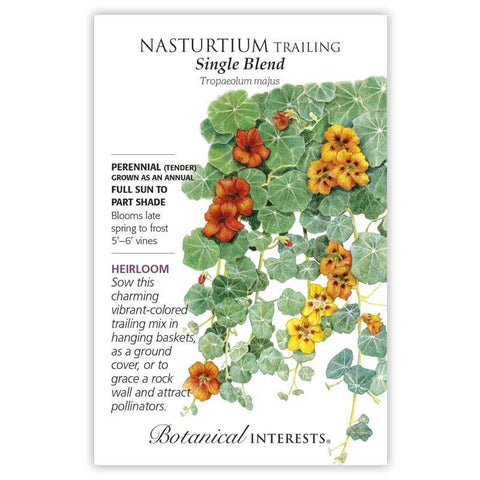 Nasturtium Trailing, Single Blend