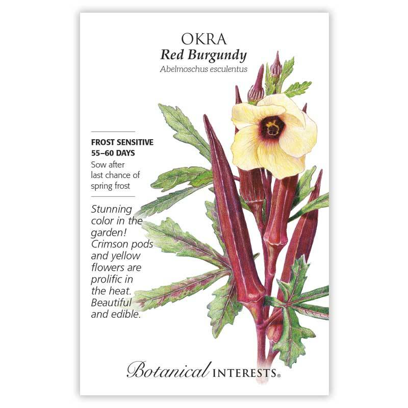 Okra, Red Burgundy