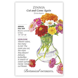 Zinnia, Cut and Come Again
