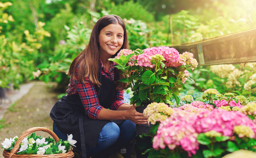 Pamper yourself with a gardening subscription box