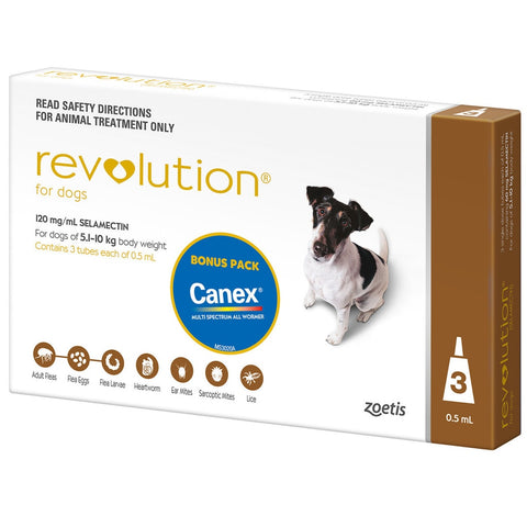 Revolution Brown For Small Dogs 5.1kg to 10kg (3 doses)