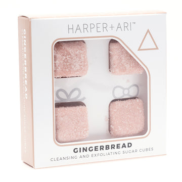 Harper + Ari - Mini Holiday Gingerbread Gift Boxes