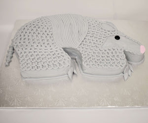 McArthur's Bakery Custom Cake with Armadillo Cut Out