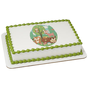McArthur's Bakery Custom Cake With Woodland Buddies In The Woods