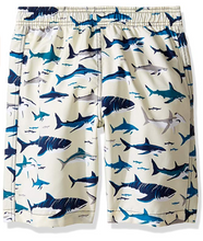 Load image into Gallery viewer, Hatley Toothy Shark Swim Trunks
