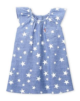 Levi's Chambray Star Print Dress