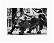 Load image into Gallery viewer, Charging Bull black & white photograph by Alex Leykin matted artwork