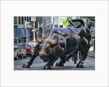 Load image into Gallery viewer, Charging Bull color photograph by Alex Leykin matted artwork