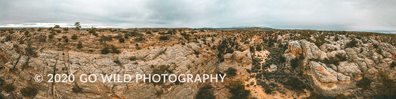 Petroglyph Canyon - Go Wild Photography [description]  [price]
