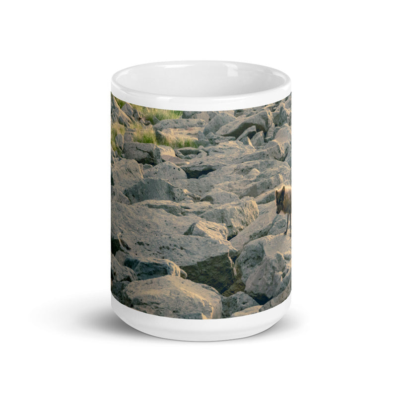 Arctic Fox Coffee Mug - Go Wild Photography [description]  [price]