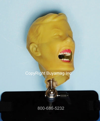 Dental Child X-Ray Manikin Simulator