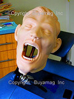 Dental Training Manikins Simulators