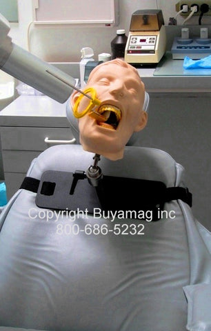 Dental X-Ray Simulator Manikins