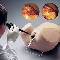 Gynecological Models Obstetric Simulators Examination