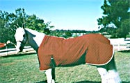 Biomagnetic Horse Blankets Regular and Summer