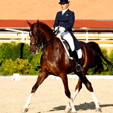 Horse Dressage Smooth Run Pro