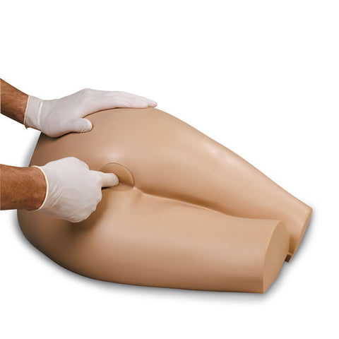 Rectal Examination Simulator Model