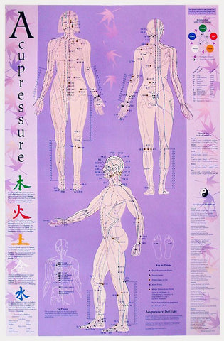 acupressure chart point poster