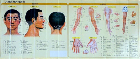 acupuncture poster chart