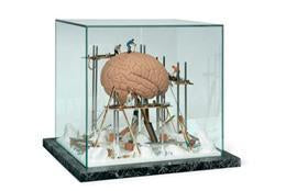 Brain Repair Reconstruction Anatomical Art Display