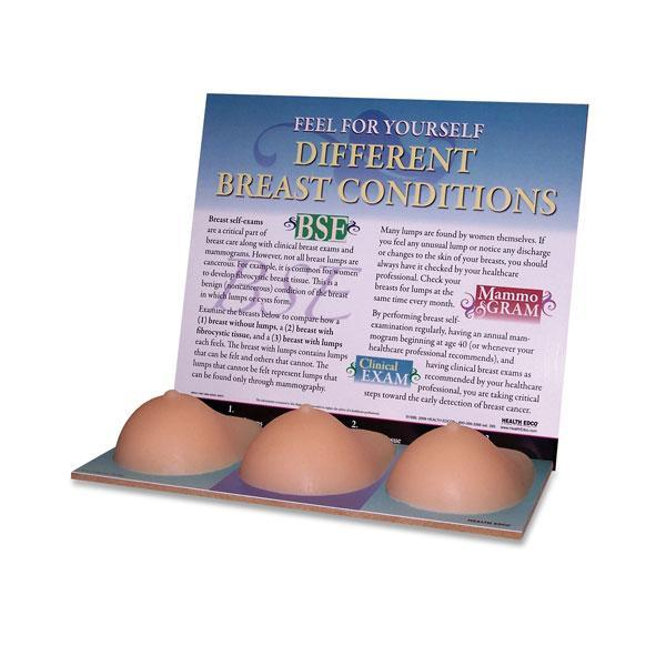 Breast Multi Type Conditions Simulator Set of 3