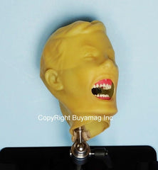dental teeth x-ray training simulator