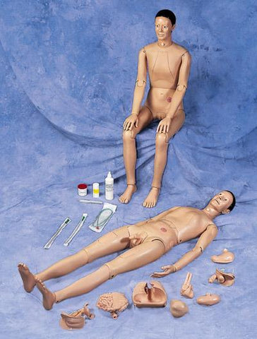 Deluxe Patient Care Manikin With Organs Male Female Interchangeable Organs