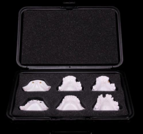 dental laboratory restoration models