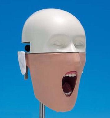 Dental Training Simulator Manikin