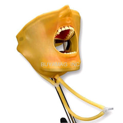 dental oral cavity cover