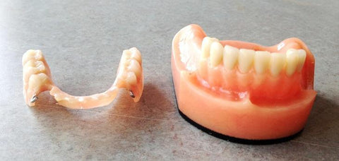 Complete Partial Dentures Acrylic Dental Model 14 Teeth