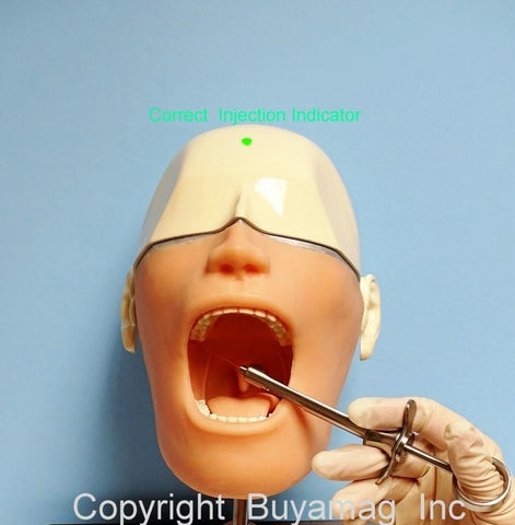 Dental Oral Anesthesia Electronic Feedback Visual Audio Sound Indicators Included Smart Phantom Simulator Manikin