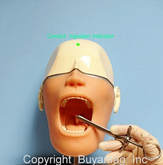 dental anesthesia manikn simulator model