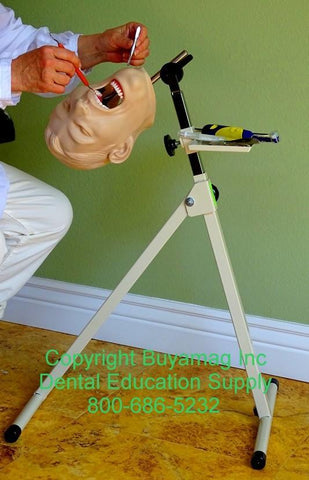 Dental Portable Stand Mount For Posture & Techniques Training Demonstrations