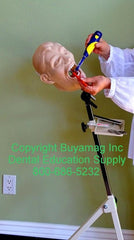 Dental Mount Portable Stand Training Buyamag inc