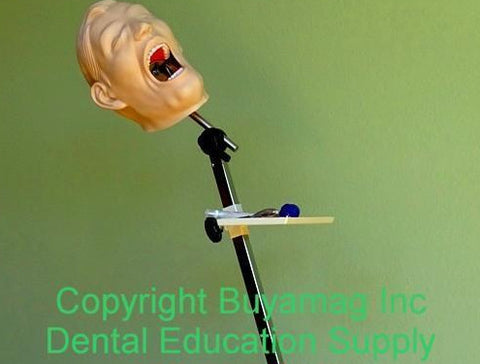 Dental Portable Stand / Mount Posture & Training Demonstrations