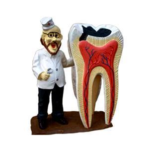 Dentist Gift Art Figurine Office Decoration  Display
