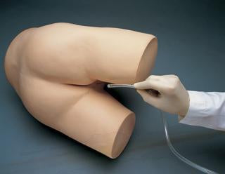 enema model simulator manikin
