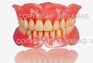Full Dentures Upper & Lower models