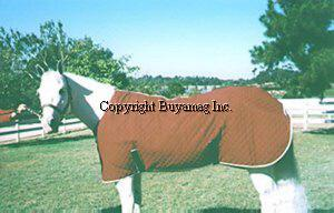 Regular Horse Magnetic Blankets