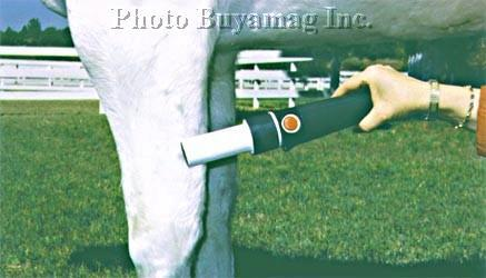 HORSE MAGNETIC PULSATING FIELD MASSAGER Portable