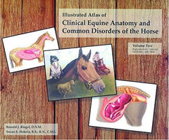 Horse Common Diseases & Disorders Clinical Atlas 100's Color Illustrations 350 Pages  second addition