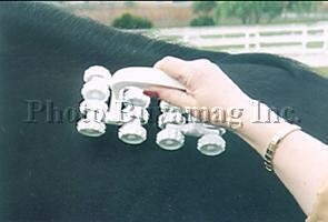 Horse Pulsating Magnetic Field Massager MS-32 For Horses