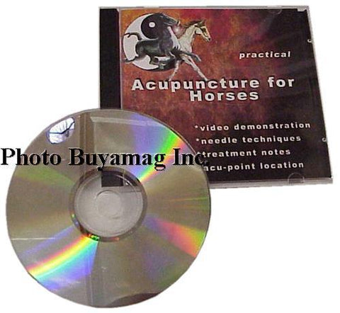 Horse Acupuncture Therapy Cd