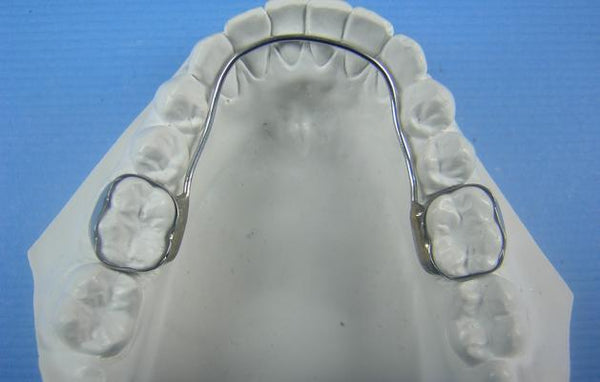 Lingual Arch Retainer Orthodontic Model