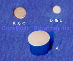 Super Rare Earth Bionorth Neodymium Magnets