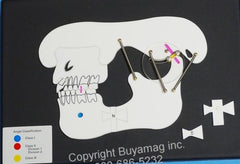 Dental orthodontic Malocclusion Demonstration Board